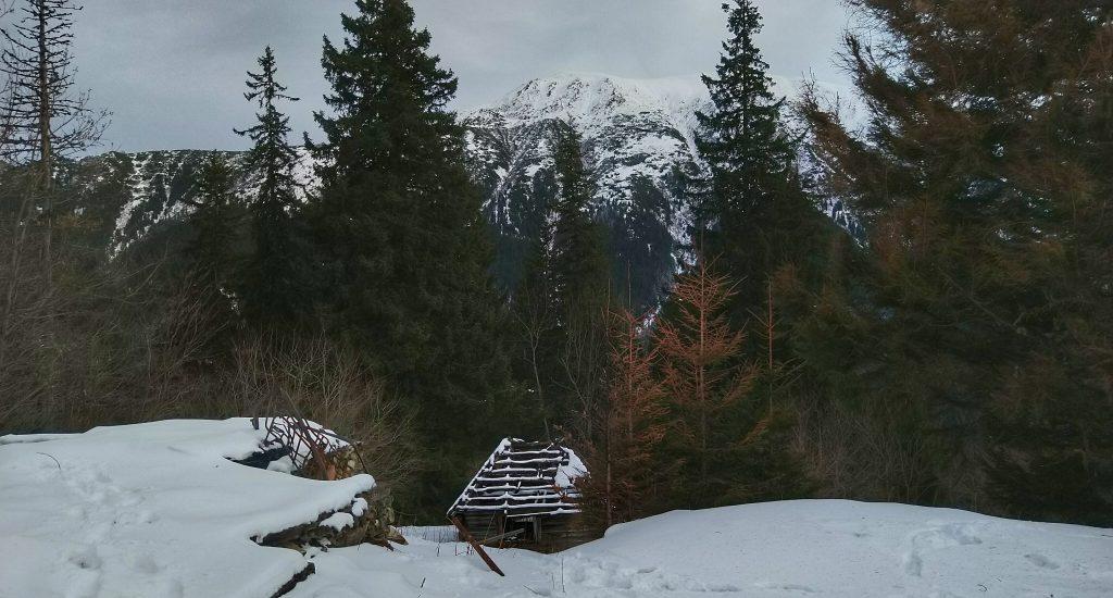 Am colindat pentru cabana Urlea.
